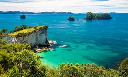 Coast in New Zealand