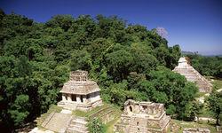 Mayan Ruins, Oaxaca and Chiapas
