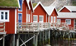 Rorbu Fishing Huts - Reine