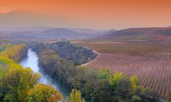 A River Winding Alongside the Vineyards of Rioja