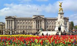 An image of the royal Buckingham Palace