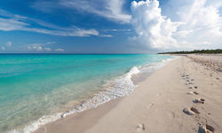 Beach in the Yucatan Peninsula, Mexico