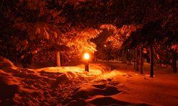 Swedish Lapland at night