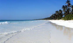 Tanzanian Coast White Beach