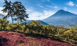 Agua Volcano, Guatemala