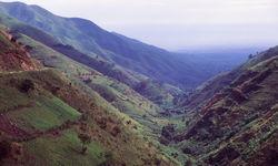 lush valley semliki wildlife reserve