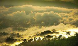 Amazon Mist Sunrise