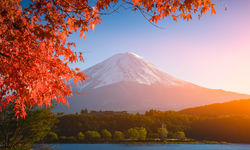 Autumnal colours at Mount Fuji