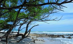 Guanacaste coastline and blue skies