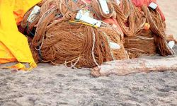 Fishing Ropes on the beach