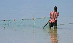 Fishermen Trawling in Nets in Grenada