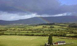 An image of the picturesque Kilkenny countryside