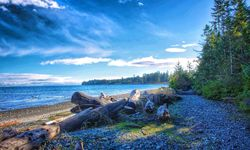 Beach in north Vancouver Island