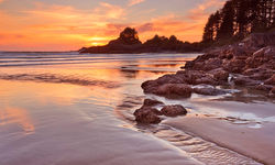 Beach on Vancouver Island