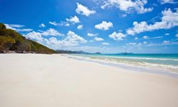 Beach in the Whitsunday Islands