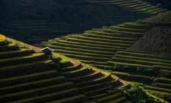 Glinting Sunlight on Sapa Hills