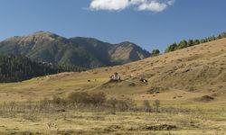 Temple in field