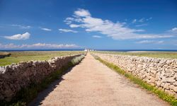 A Road Bordered by Stone Walls in Menorca