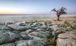 Kalahari in Botswana