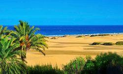 Gran Canaria maspa reserve