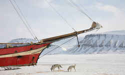 Ship trapped on ice