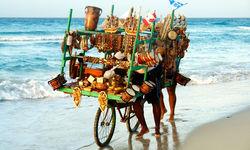 Beach transport in Cuba