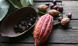 Cocoa beans in Grenada