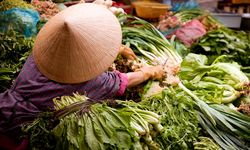 Vietnam food market