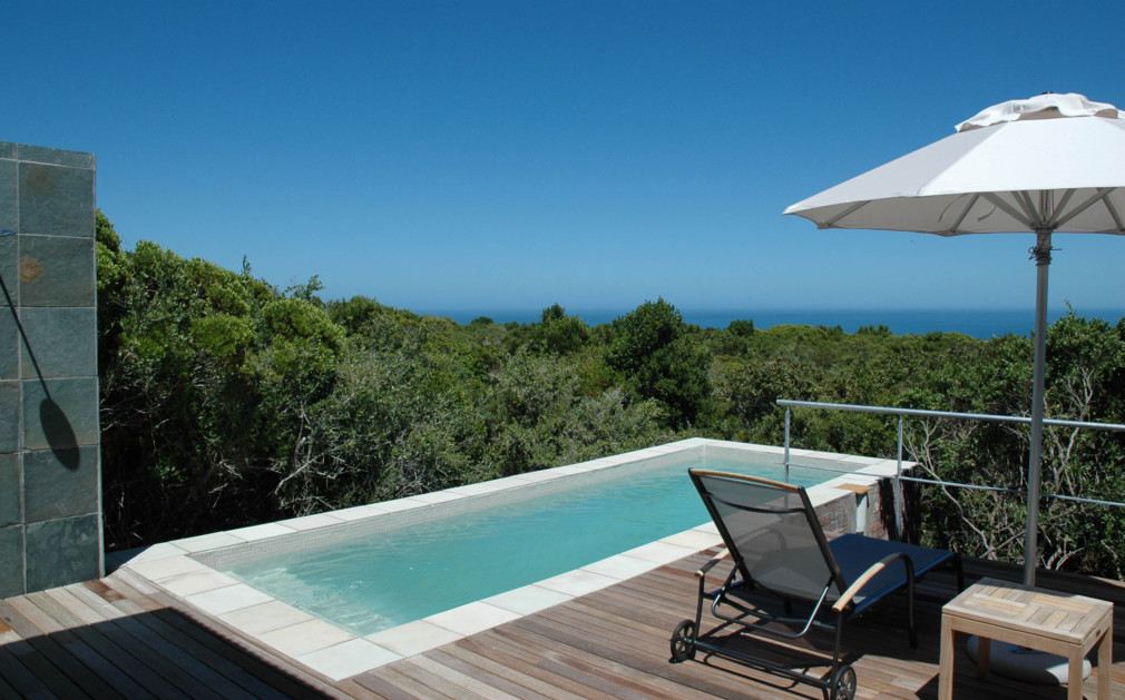 Grootbos Private Nature Reserve Luxury Wildlife Trips