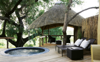 Plunge pool and loungers at Londolozi hotel