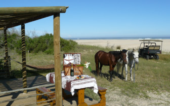 Picknick and horses at the beach