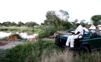 Game drive at Royal Malewane, luxury safari camp in South Africa