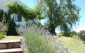 The garden at La Almuna, luxury hotel in Spain