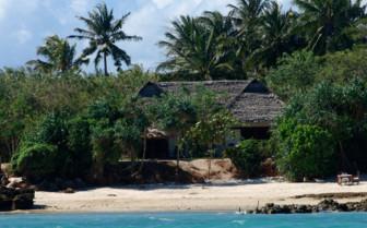 Fumba Villa between palmtrees at the beach