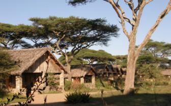 Cottages at Ndutu Safari Lodge