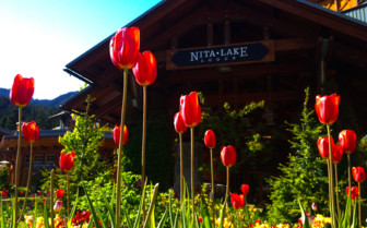 Exterior with flower at Nita Lake Lodge