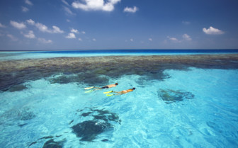 Picture of Snorkelling at Gili Lankanfushi