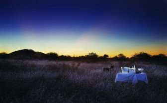 Private bush dinner at Molori Safari Camp