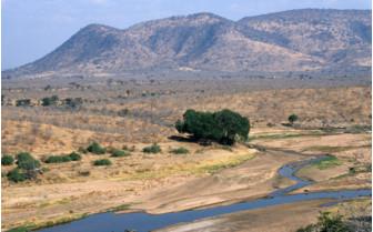 The Ruaha River