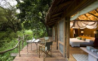 Tree lodge with balcony
