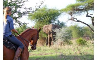 Horse Riding at Manyara Ranch