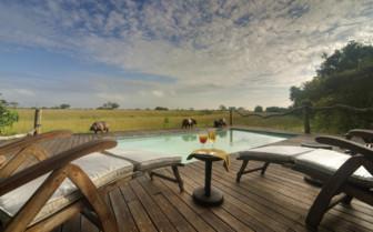 The pool deck with wildlife views at Lebala Camp