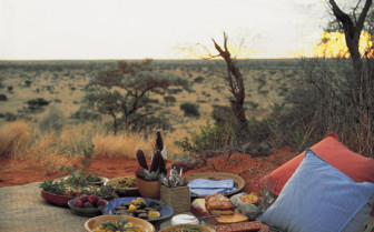 Private bush picnic at Tswalu