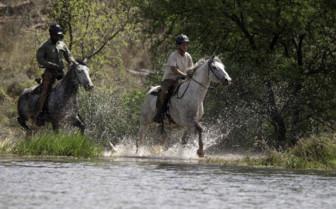 Horseback Safari at the camp