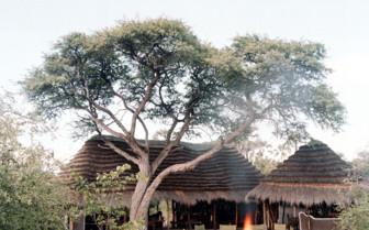 Exterior at Ride Makgadikgadi Pans Camp