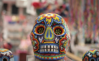 Skull, Day of the Dead