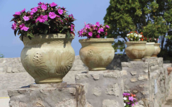 Flower pots sitting on a wall
