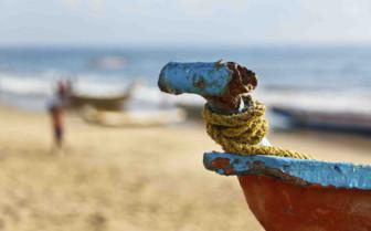 Stern of boat on beach