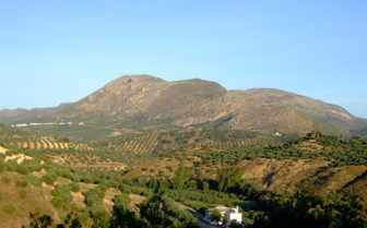 A View of Casa Olea Nestled in the Surrounding Landscape