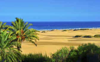 The Maspa Reserve in Spain
